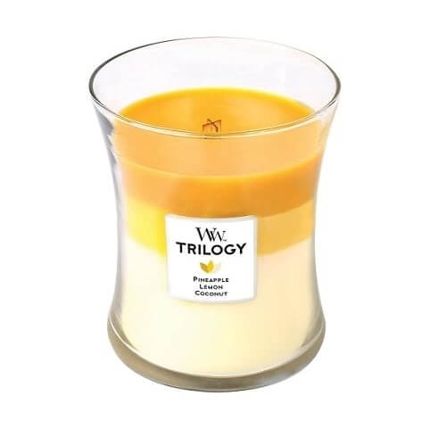 WoodWick Fruits of Summer Trilogy Medium Jar Candle